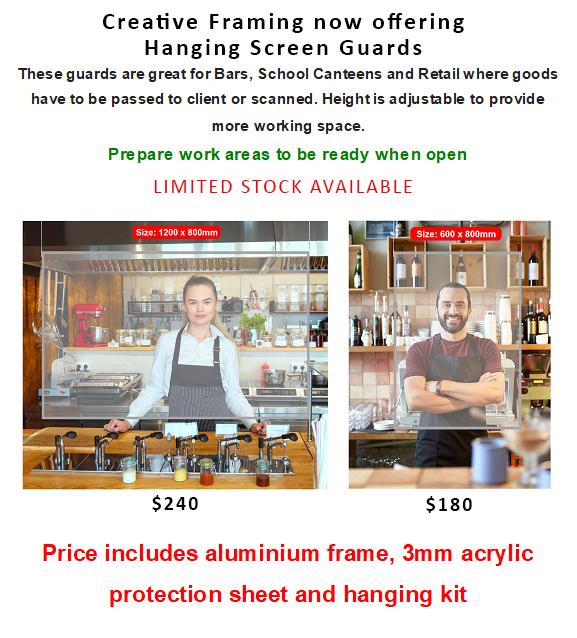Screen guards